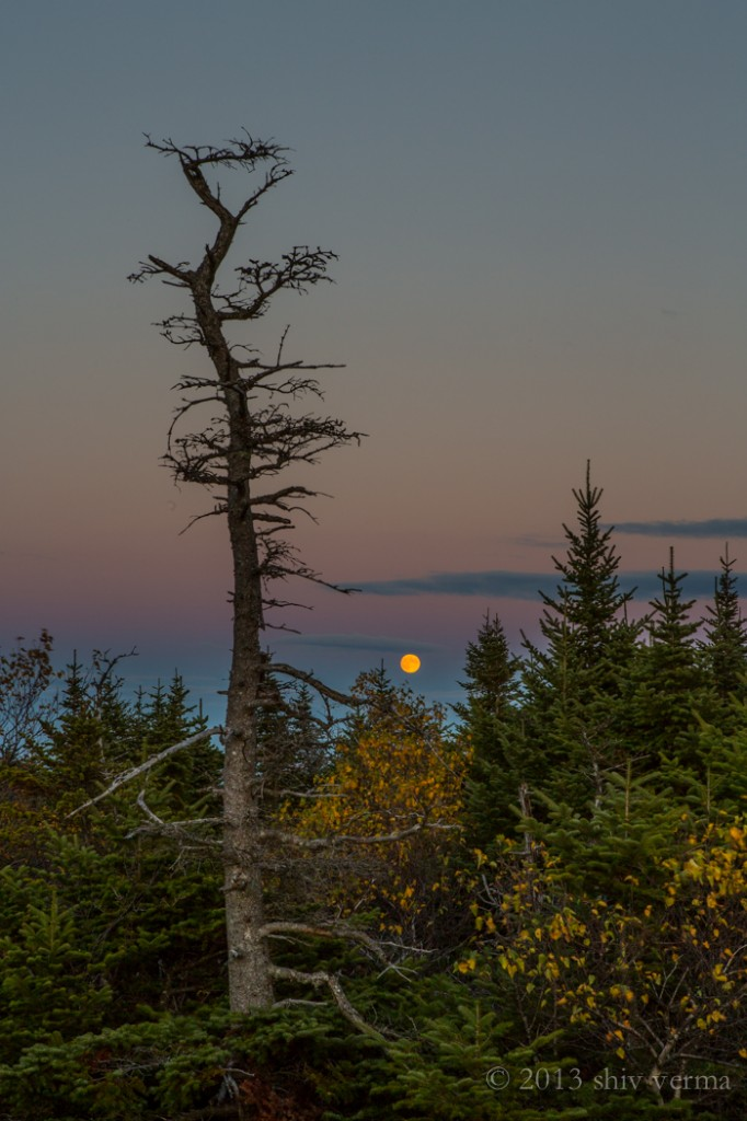 Full Moon rising at Cadillac Mountain
