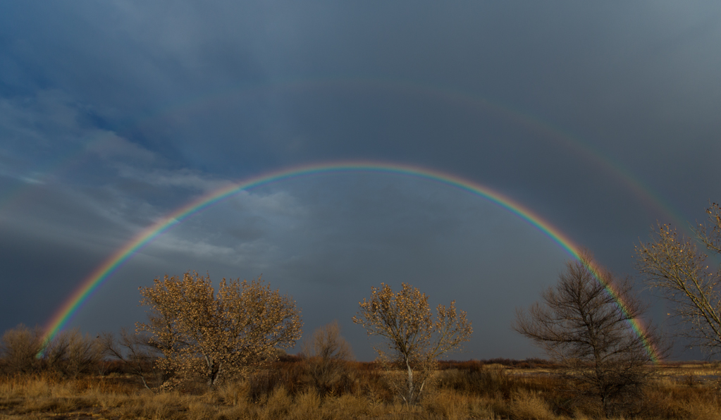Rainbows - Bosque del Apache
