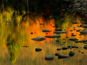 Autumn_Reflected