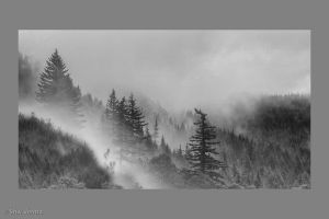 c7-Fog_in_the_Mt_Hood_Range.jpg