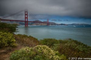 Golden Gate Bridge from the Park